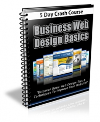 Business Web Design Basics Newsletter - PLR