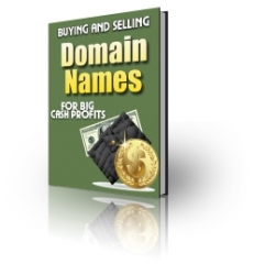 Buying and Selling Domain Names - PLR