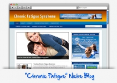 Chronic Fatigue Syndrome Niche Blog