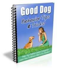 Good Dog Newsletter Set - PLR
