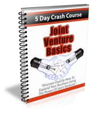 Joint Venture Basics PLR Newsletter