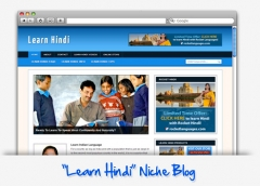 Learn Hindi Niche Blog