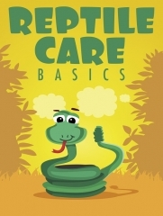 Reptile Care Basics