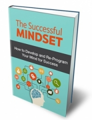 The Successful Mindset