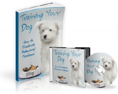 Training Your Dog - MRR