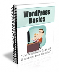 Wordpress Basics PLR Newsletter